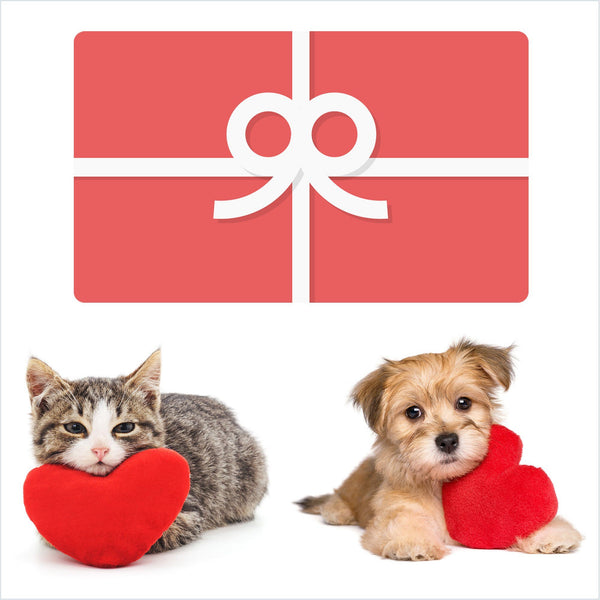 Gift Card - Valentine's Love Gift Card