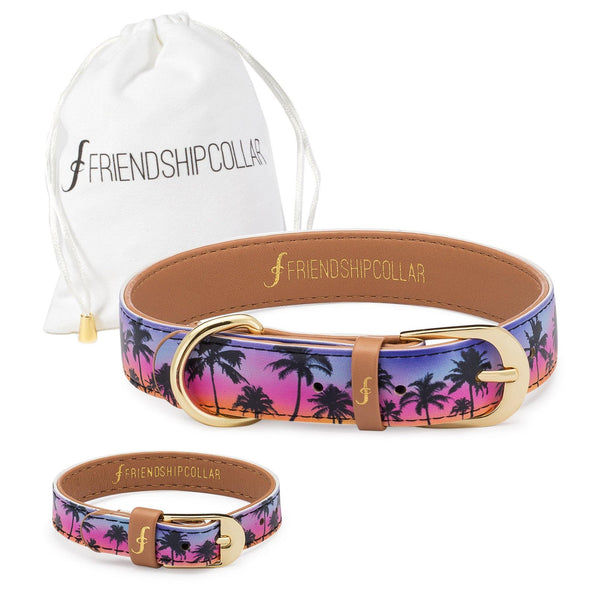 Hawaii Fur-0 Friendship Collar & Bracelet Set