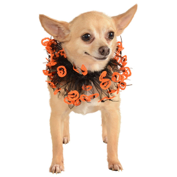 Jack O'Lantern Pet Costume Collar