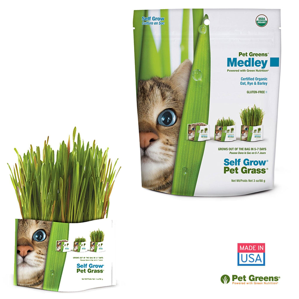 Pet Greens® Pet Grass Garden Medley Grow Kit