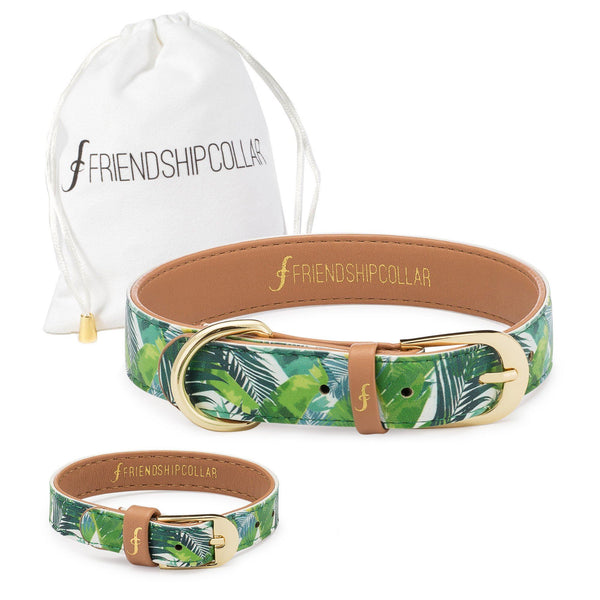 Saint Barkez Friendship Collar & Bracelet Set