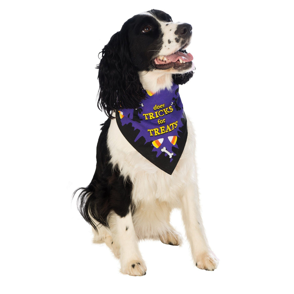 Tricks For Treats Pet Bandana