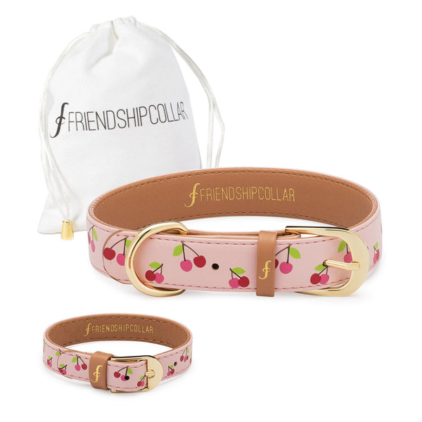 Tutti Poochi Friendship Collar & Bracelet Set