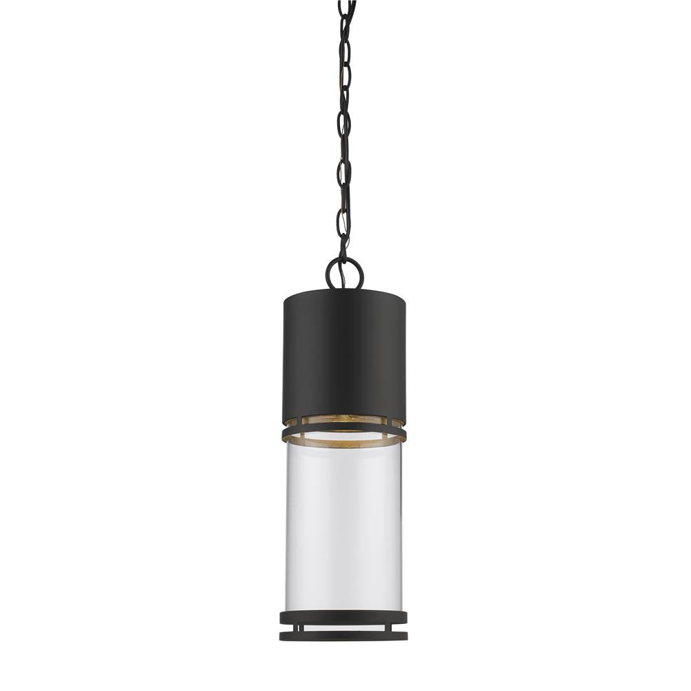 Z-Lite 553CHB-ORBZ-LED Luminata Outdoor LED Chain Hung Light in Oil Rubbed Bronze