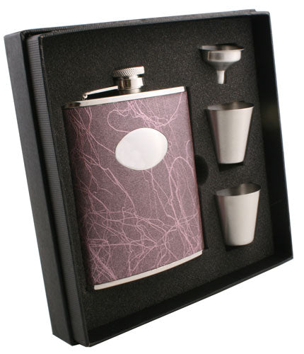 Visol Lighting Stainless Steel 6oz Deluxe Flask Gift Set