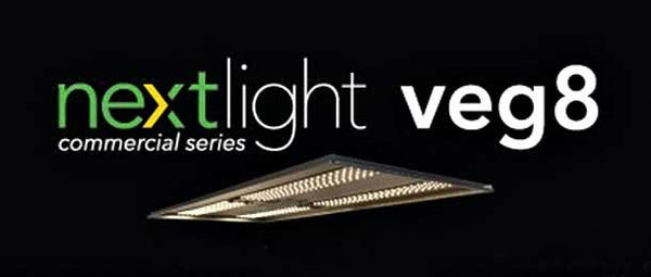 NextLight Veg8 Review