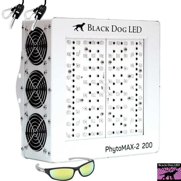 Black Dog LED