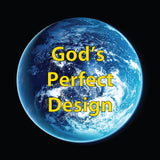 God's Perfect Design Gospel Tract for Children and Adults - 24/pk