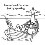 Jesus Calms the Storm   - 12/Pk Size: 6 x 6