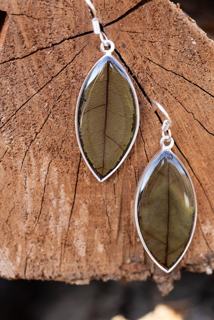 Leaf in Resin Oval Earrings