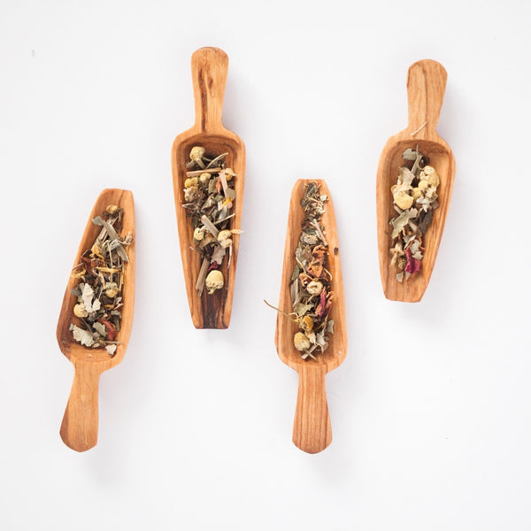 Olive Wood Spice Spoons - Set of 4 - fairtribe