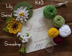 (20) Twenty to Crochet Book: Crocheted Flowers to Wear