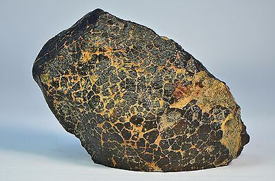 Unclassified Stoney Meteorite | Fresh Crusted Breccia | 224.3g