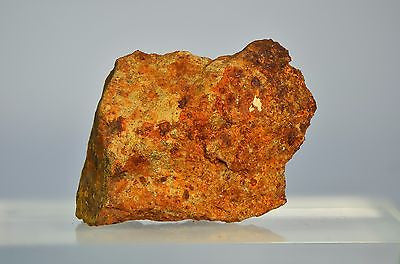 Clarendon(c) 108g New Texas Meteor Find! | Large Fragment | Limited availability