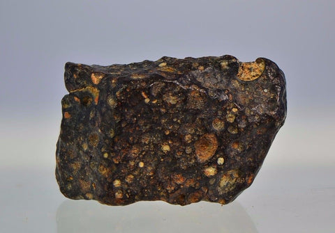 12g Unclassified NWA Carbonaceous Chondrite | CV3 Carbonaceous Meteorite
