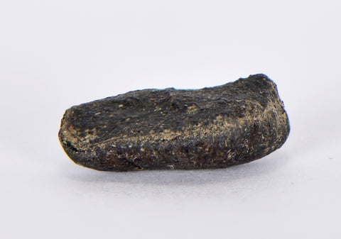BUZZARD COULEE 3 grams - H4 Chondrite Meteorite Fall