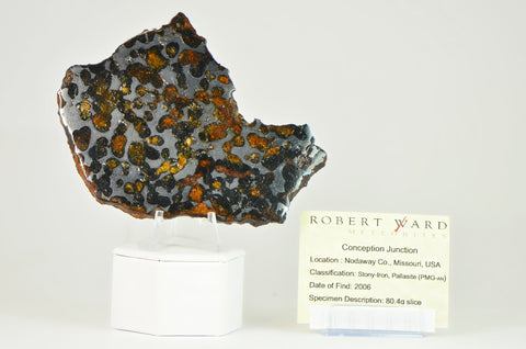 Conception Junction Rare Pallasite Stoney Iron Meteorite | 80.4g Beautiful Full Slice