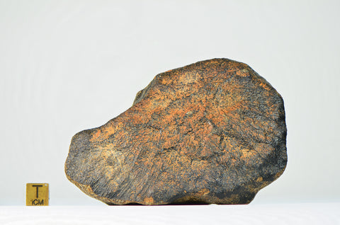Achondrite 434g | Unclassified - w/Fusion Crust - Top Meteorite - 1