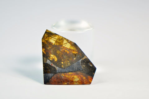 FUKANG PALLASITE Meteorite | 0.63g Top Quality A+ Specimen | Jewelry from Space!