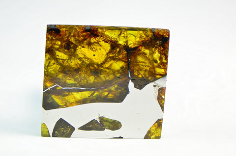 FUKANG PALLASITE Meteorite | 19.7g Top Quality A++ Specimen | Jewelry from Space!
