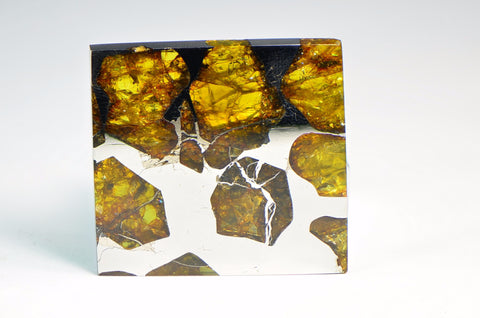 FUKANG PALLASITE Meteorite | 19g Top Quality A++ Specimen | Jewelry from Space!