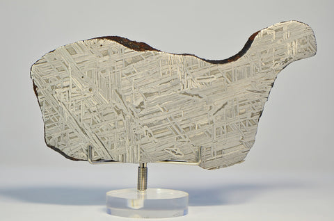 IID Iron Meteorite Full Slice 149.1g | Spectacular Etch A+++ Collection Specimen