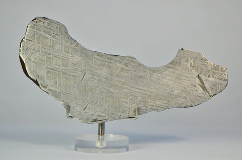 IID Iron Meteorite Full Slice 167.2g | Spectacular Etch A+++ Collection Specimen
