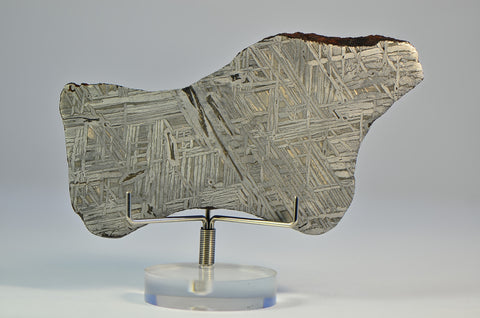IID Iron Meteorite Full Slice 93.9g | GHERIAT 004 | Spectacular Etch A+++ Collection Specimen