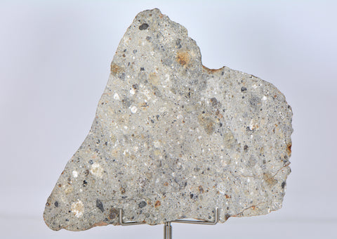 68.35g Howardite Meteorite Slice I NWA 11899 I Beautiful HED Slice