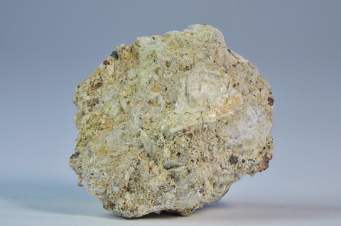 Norton County 25.8g | Aubrite Achondrite | Historic Meteorite Fall