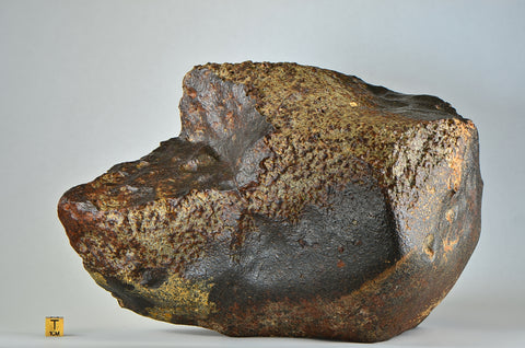 Stunning Ordinary Chondrite Meteorite, 8.5 Kg I A++ Grade Unclassified Ordinary Chondrite