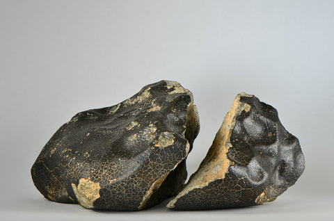 Unclassified Meteorite Breccia Pair - Ordinary Chondrite