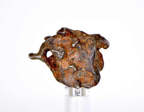 SERICHO Pallasite Meteorite 16.2g I Sculpted meteorite with NATURAL HOLE