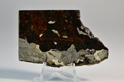 48.1 g SEYMCHAN Meteorite Full Slice I Spectacular Etch I Collection Specimen