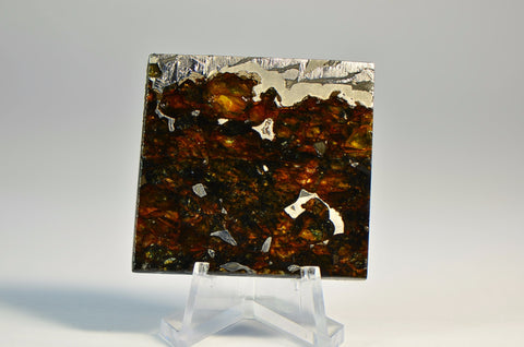 24.3 g SEYMCHAN Meteorite Partial Slice I Spectacular Etch I Collection Specimen
