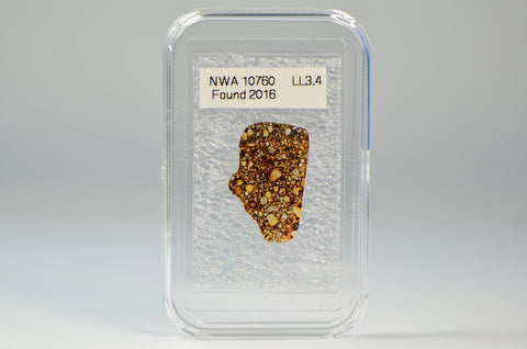 Meteorite Thin Section - LL3.4 | NWA 10760 Ordinary Chondrite