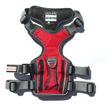 Northdogs Denali Harness