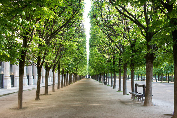 Palais-royal garden paris