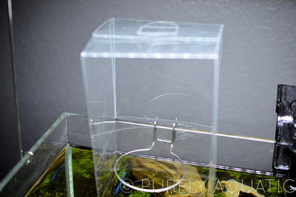 Clear Plastic Wabi Kusa Humidity Box