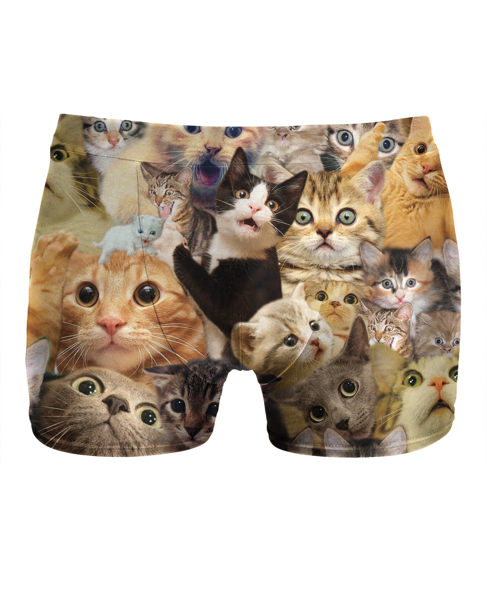 Surprised Cats Underwear