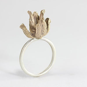 Cedar Husk Ring in Bronze and SS, by Laws Of Nature, LON7