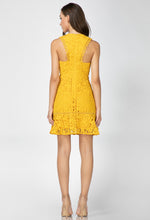Load image into Gallery viewer, Jessie Woven Lace Dress
