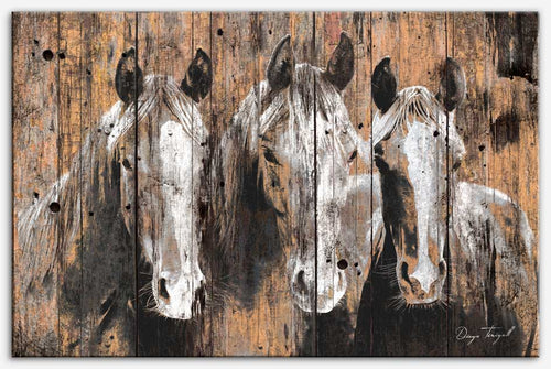 Pure Horses - Canvas Print from the Animal collection by Diego Tirigall
