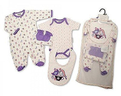 Brand New Baby Girl Jersey Cotton 5 Piece Clothing Gift Set Sleepsuit, Vest, Bib