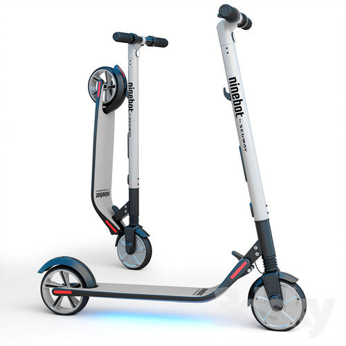 Ninebot By Segway  Electric Kickscooter ES4