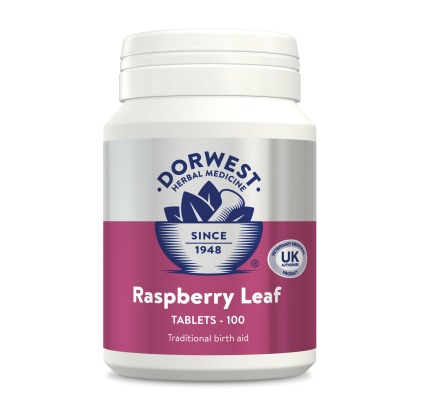 Dorwest Raspberry Leaf Tablets For Dogs - HOUNDSONLINE