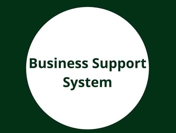 Nigeria's Business Support System: A Perception Versus Reality