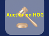 Auction on HOG