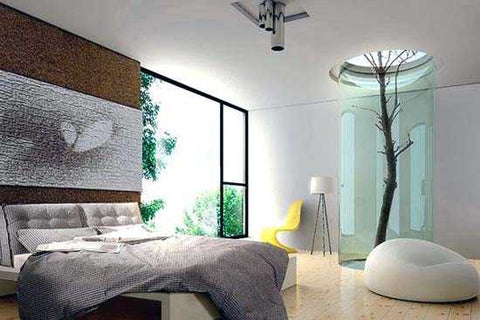 Modern bedroom design with a living tree