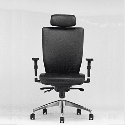Bionic Executive Chair with Headrest